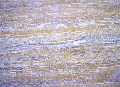 Golden Travertine Vein Cut Close 2