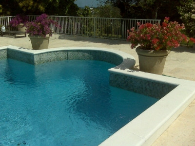 Seashell White Pool Coping